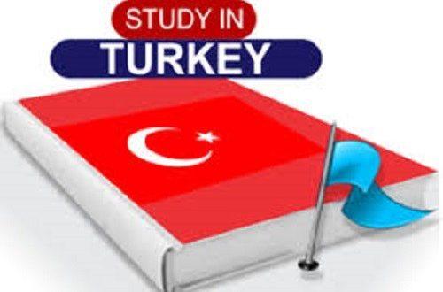 Türkiyede okuw   Synagsyz uniwersitet